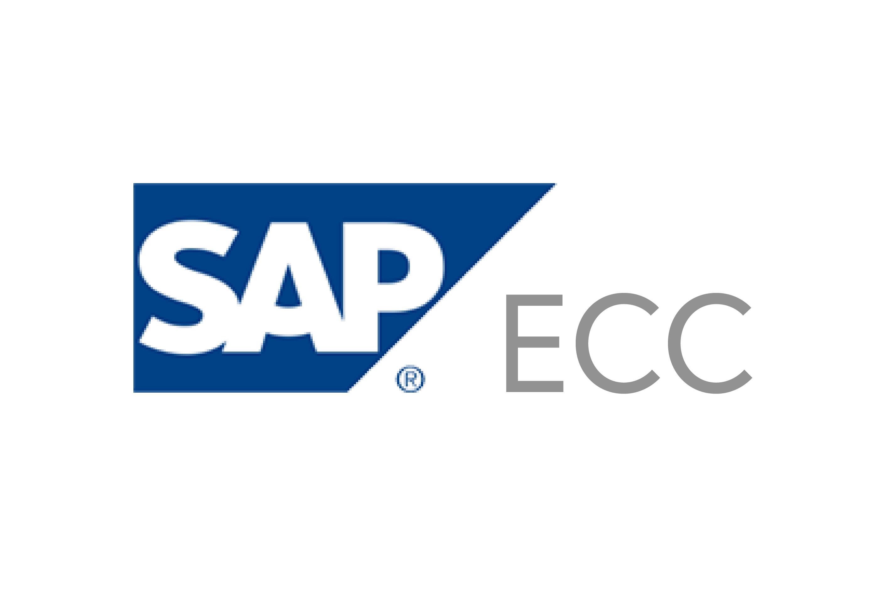 sap ecc payment processing