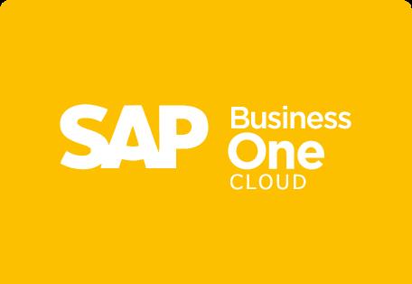 sap b1 cloud payment processing