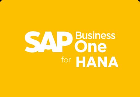 sap b1 hana payment processing