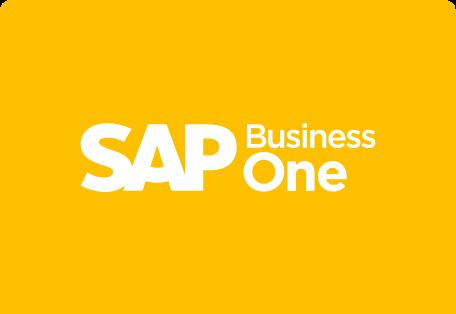 sap b1 payment processing